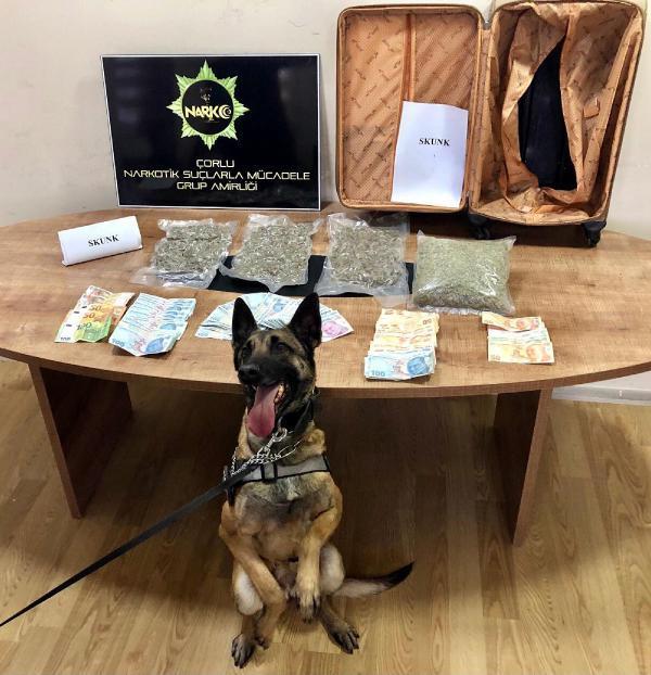 Кучето Ларисса откри 1,5 кг наркотичен скунк в български автомобил